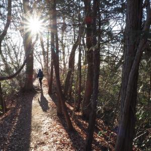 南高尾の超穴場ハイキングコース草戸山~榎窪山縦走ルート!空いていて快適に歩ける!