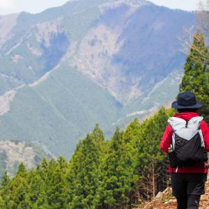 春の浅間嶺をお花見ハイキング!桜やツツジなどが咲いていて気持ちが良いコース