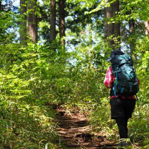 登山初心者にもおすすめ!東京都内の日帰りで行ける登山コース5選