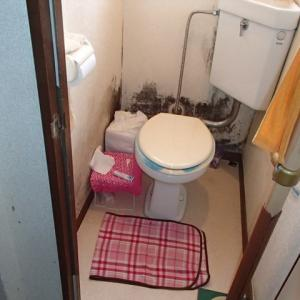 アパートのトイレの黒かび 雨水の侵入が原因でした