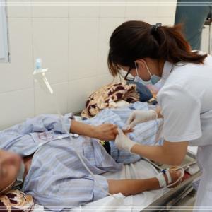 ハノイでデング熱が急増 1週間で228人