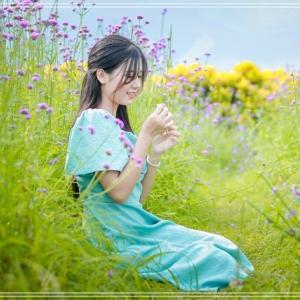 若者たちの間で話題 西洋のように美しいハノイのラベンダー畑
