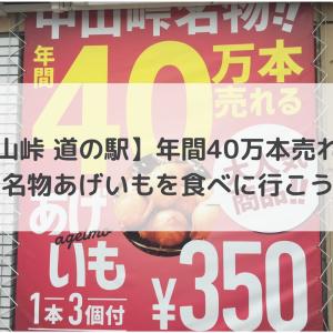 【中山峠 道の駅】年間40万本売れる!名物あげいもを食べに行こう