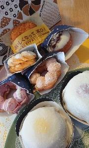 ミスタードーナツ 新商品 モチクリームドーナツ  おもちとドーナツ合うの⁉️