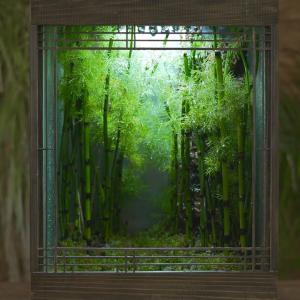 「雨の庭」を極小空間に再現した日本人の作品に海外感動
