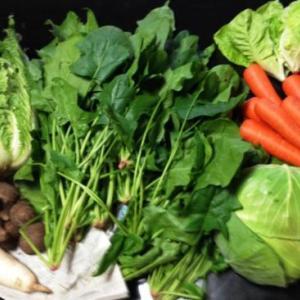 捨てる所が無いくらい、上手に野菜を使おう