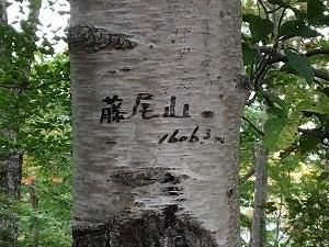 藤尾山(天狗棚山) 2020.10.04