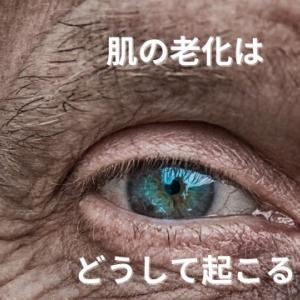肌の老化はどうして起こる? 早めのエイジングケアが大切<原因と対策>