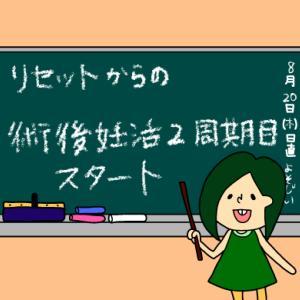 リセットからの術後妊活2周期1日目【妊活徒然日記】