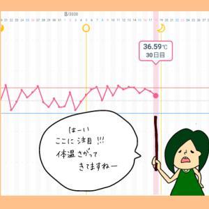 術後妊活第1周期30日目【妊活徒然日記】