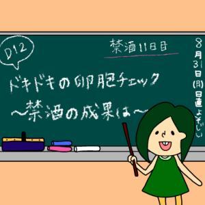 術後妊活2周期12日目〜卵胞チェックの日〜【妊活徒然日記】