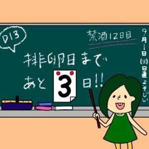 術後妊活2周期13日目〜排卵検査薬使用開始〜【妊活徒然日記】