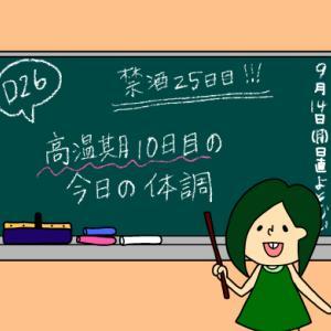術後妊活2周期26日目〜今日(高温期10日目)の体調について〜【妊活徒然日記】