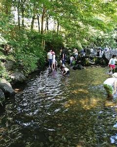 【横浜】夏休みは子供と行きたいじゃぶじゃぶ池【四季の森公園】