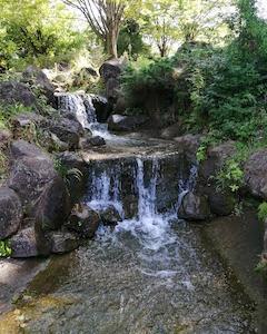 横浜で水遊びができる公園【王禅寺ふるさと公園】