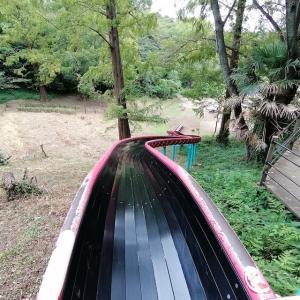 【横浜】三ツ池公園の森の中、最高に楽しいロング滑り台に子どもも大興奮!