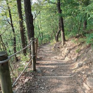 登山一回して食べ過ぎた。「ムルフェ」、「ノガリ」、「サーティワン」、「コーヒー」
