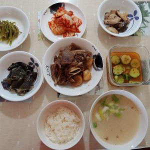 韓国の家庭食、「コムタン」と「カルビチム」。猫との出会い。寒天で作ったダイエット料理。