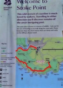 イギリス・コーストパスを歩く!デボン州 Stoke Point から Noss Mayoへ。