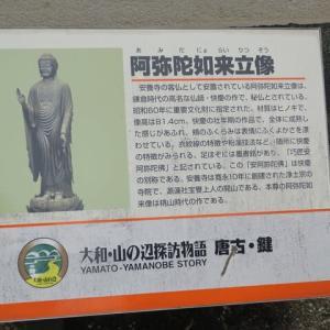 奈良県磯城郡 安養寺