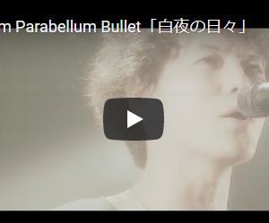 【今日の一曲:第81回】9mm Parabellum Bullet / 白夜の日々