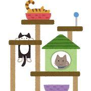 【猫様】念願のキャットタワー