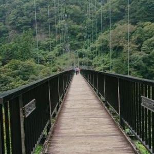 【トイプー】鬼怒川温泉旅行④観光【犬】