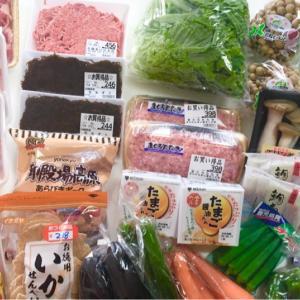 【5人家族 2週目】1週間分の買い出し〜作り置き冷凍