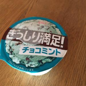 【約30年ぶりに食べた】チョコミントアイス