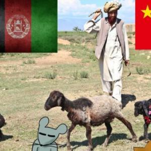 【米支新冷戦】:アフガニスタン情勢を勝手に考察(後編1)