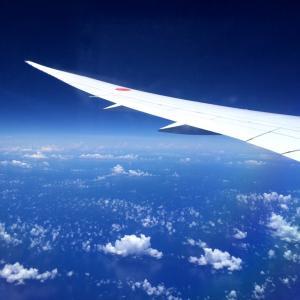 コロナでリストラでも使える 社員用航空券