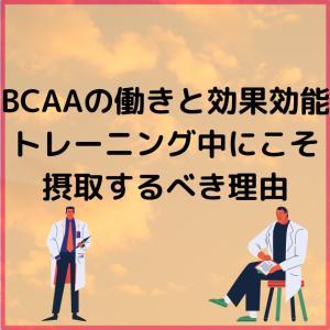 BCAAの働きと効果効能【トレーニング中にこそ摂取するべき理由】