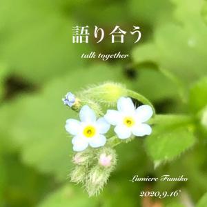 9/16心の羅針盤〜デイリーエナジーメッセージ