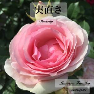 9/21心の羅針盤〜デイリーエナジーメッセージ