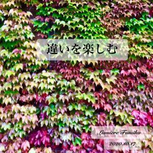 違いを楽しむ~10/17心の羅針盤~デイリーエナジーメッセージ
