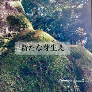 新たな芽生え〜10/21心の羅針盤デイリーエナジーメッセージ