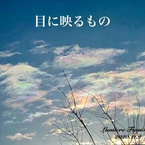 目に映るもの〜11/2心の羅針盤デイリーエナジーメッセージ