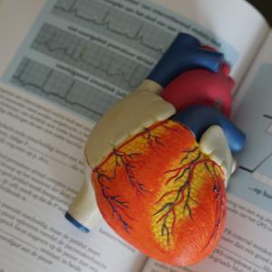 不整脈あるけど運動していいの?危ない不整脈の種類と心電図波形