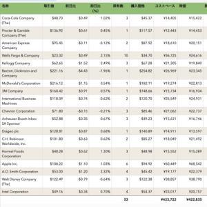 【9ヶ月目】米国株に毎月5万円積立したら儲かるの?(2020年8月分)