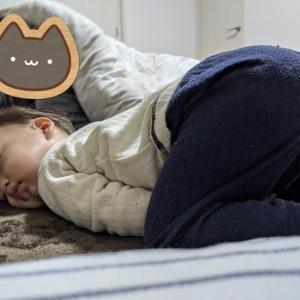 【息子を授かるまで⑫】甲状腺機能低下症?