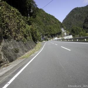 静岡の山中(その3)