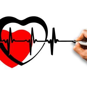 【エコー画像有】心拍確認と2014年不妊治療費総額公開
