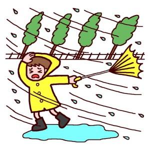 台風 対策方法