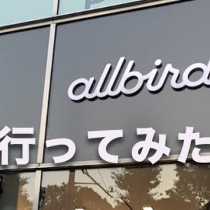 Allbirdsを実際に購入してみた!履き心地や店舗の感想
