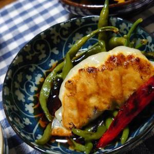 9/15(水)餃子
