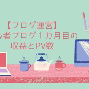 【ブログ運営】初心者ブログ1カ月目の収益とPV数