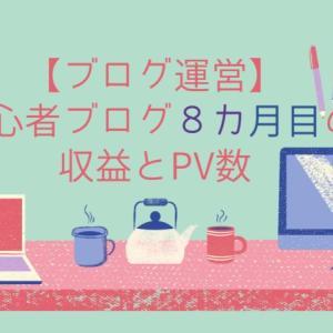 【ブログ運営】初心者ブログ8カ月目の収益とPV数