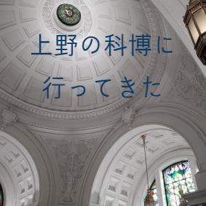 再開した科博へ 国立科学博物館