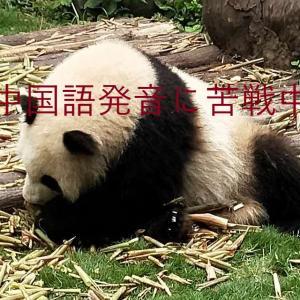 間違いやすい発音 「中国語発音完全教本」
