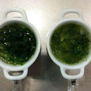 ウィローモスで肥料効果を検証。肥料の有無で比較した結果